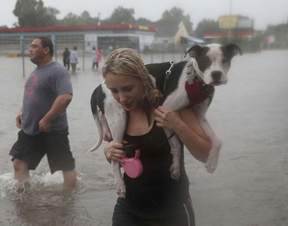 Aug. 27, 2017 – Houston, TX – Naomi Coto carries her dog Simba on her shoulders as they evacuate their home. (Joe Raedle/Getty Images)