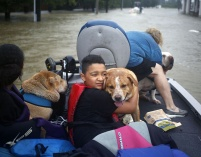 Aug. 28, 2017 – Spring, TX – A boy hugs his grandmothers' dog after being rescued from rising floodwaters. (Luke Sharrett/Getty Images)